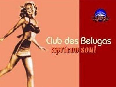 Club des Belugas – Apricoo Soul