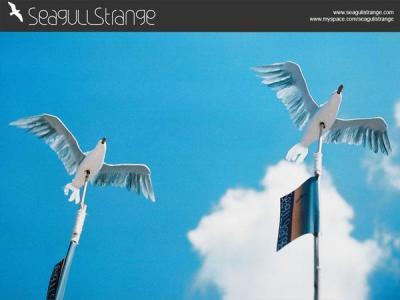 Seagull Strange – Scissors Paper Stone