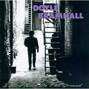 Doyle Bramhall – Bird Nest on the Ground